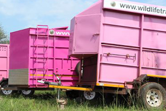 wildlife-trading-services-trailers